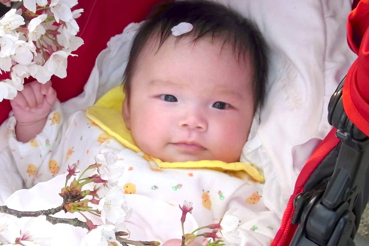 早生まれって何月のこと?早生まれの基礎知識とメリットやデメリット