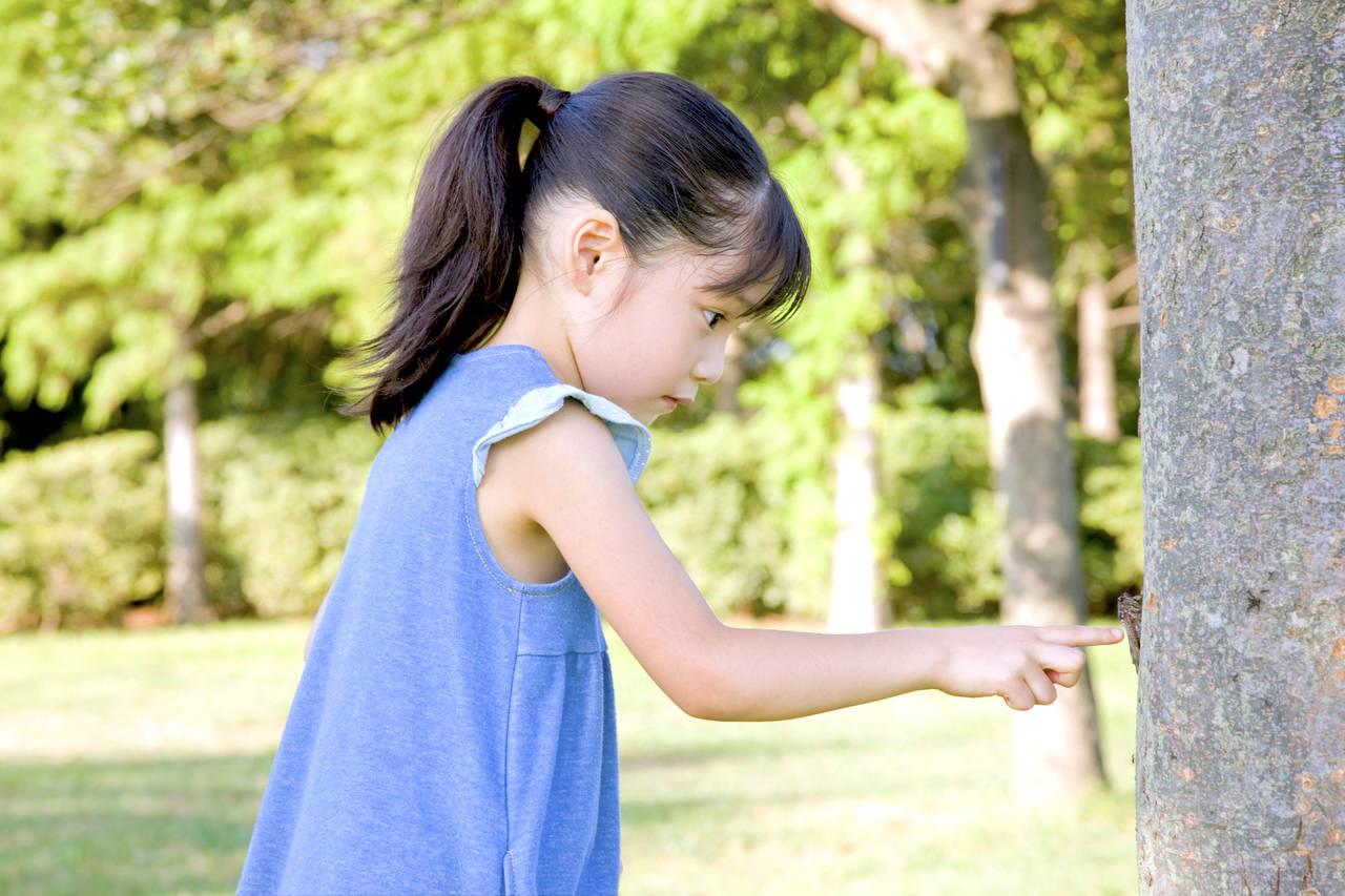 5歳の子ができることを知ろう!発達の目安と成長の促し方