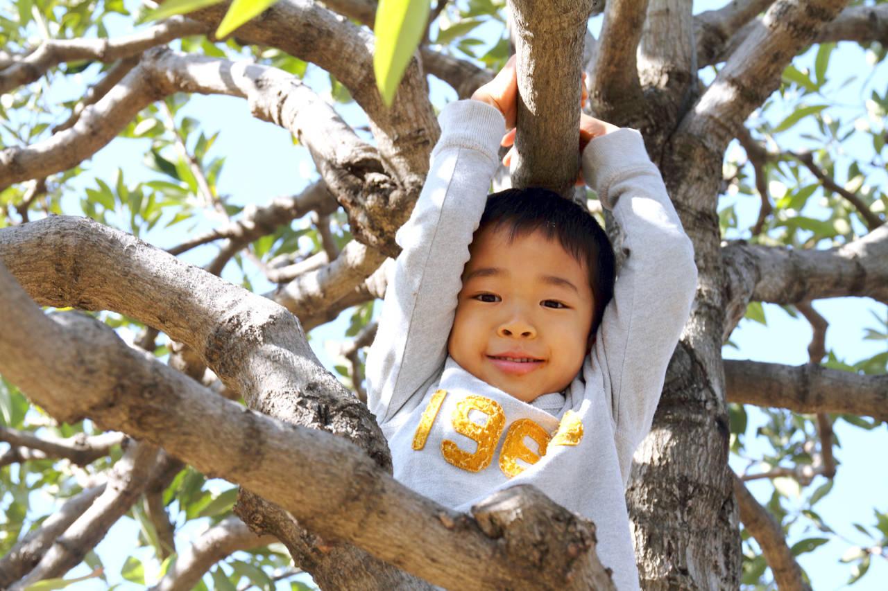 5歳児の男の子の遊び方。遊びで学ぶことや屋内、屋外の遊びをご紹介
