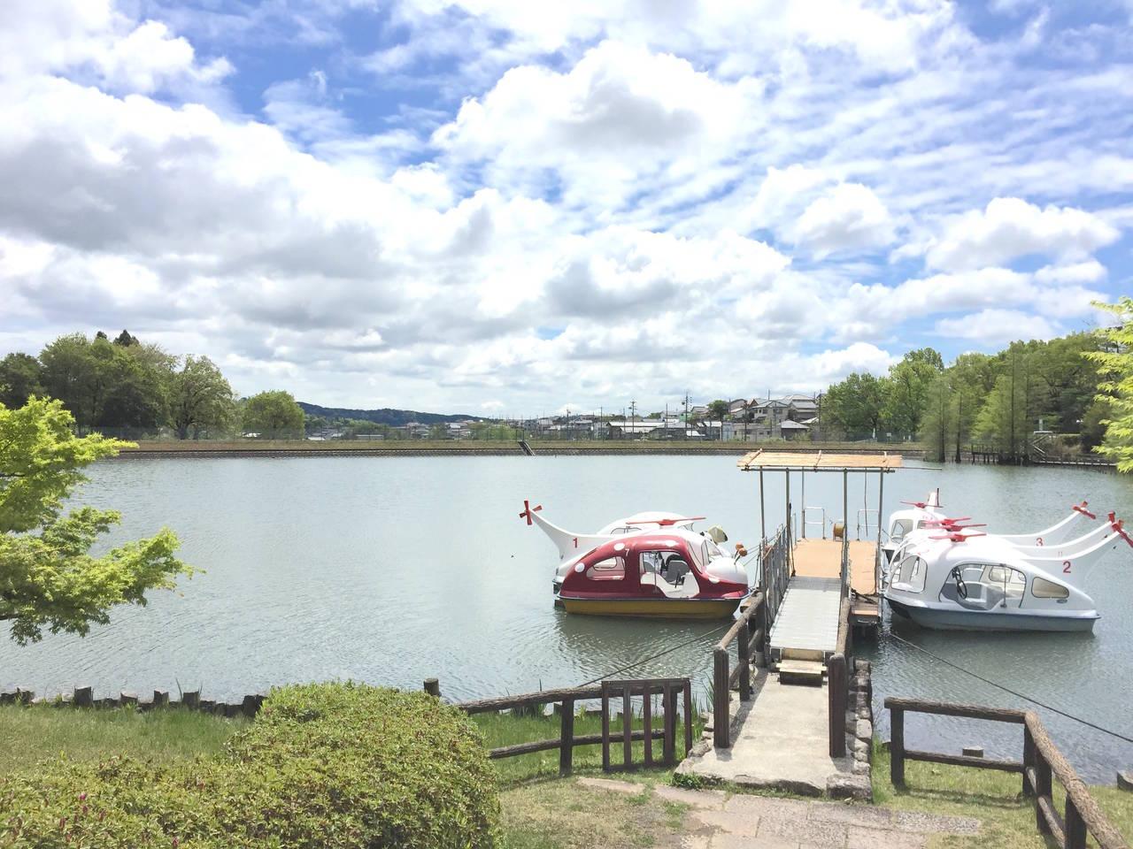 【愛知】錦鯉が迎えてくれるボートに乗る「グリーンピア春日井」