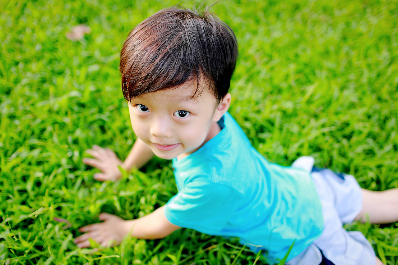 幼児期の成長曲線について知ろう!発達の段階や曲線の見方と考え方