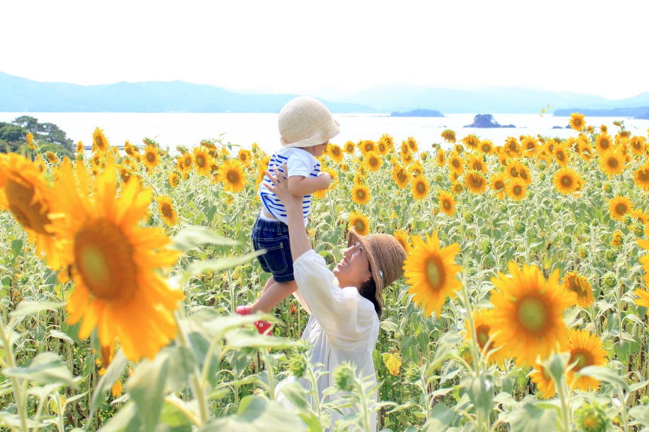 宮城県の子育で事情を知ろう。子育て世代に住みやすい市町村とは