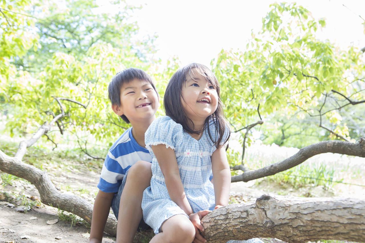幼児期の自然体験が大切な理由。自然体験の効果や親子で楽しむ方法