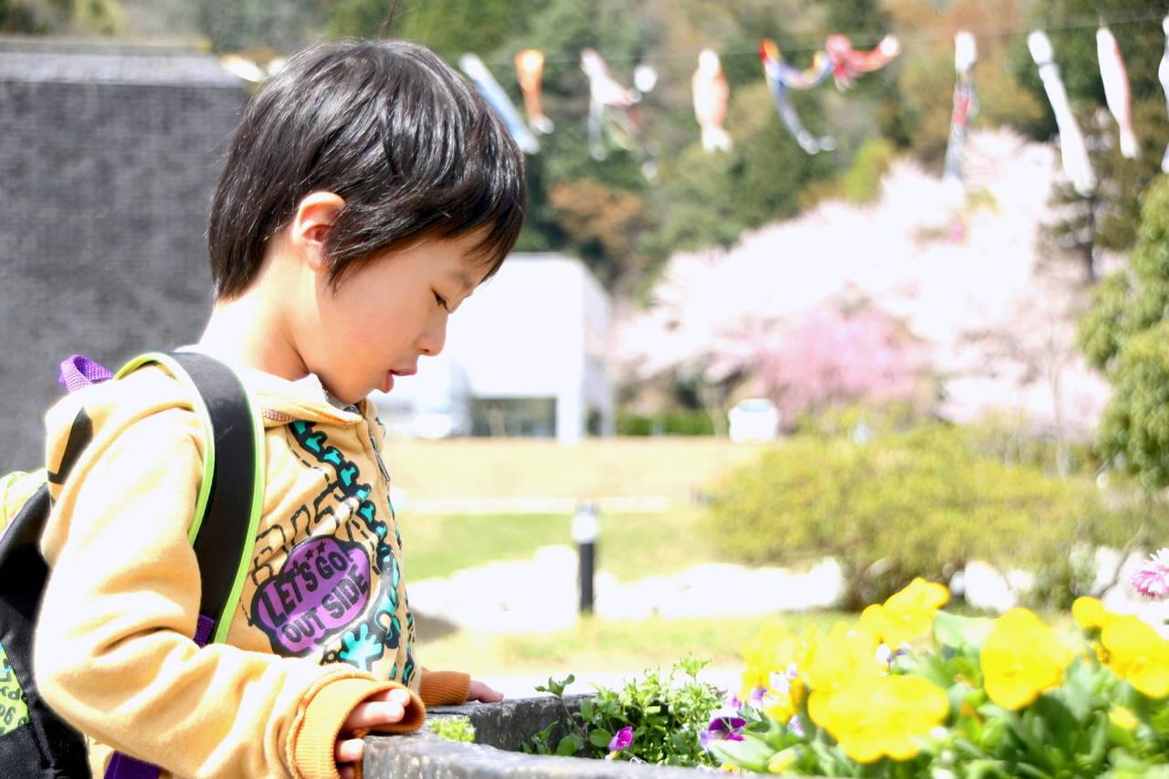 福井での子育ては魅力がいっぱい!活用したい子育て支援と遊び場紹介