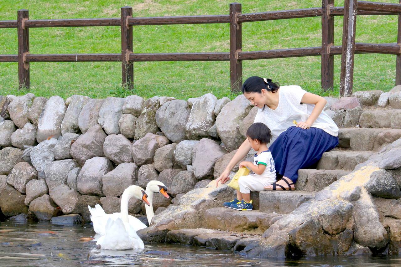 大分で子育て!育児満足度日本一を目指す県の魅力的な取り組みを紹介
