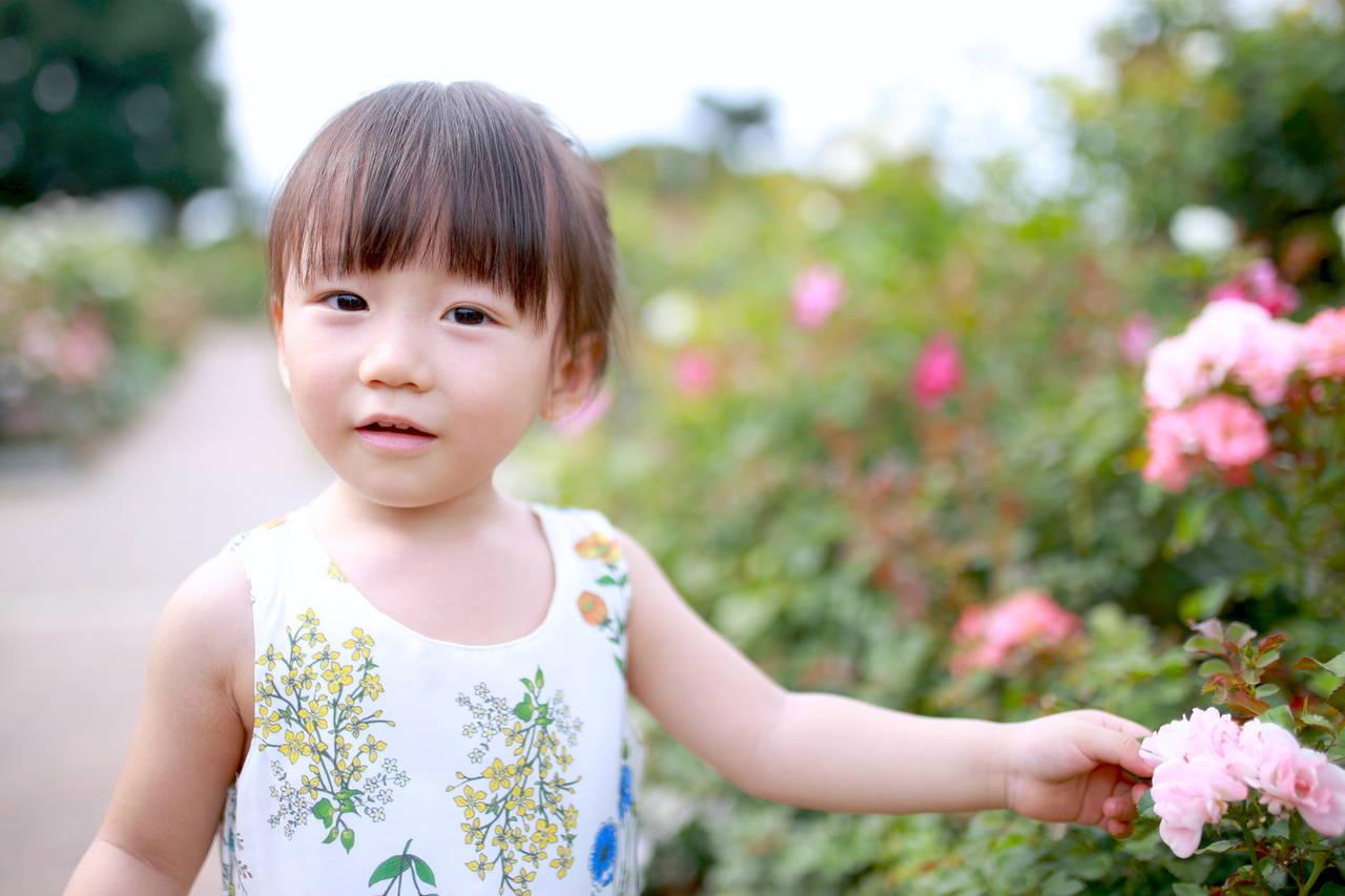 幼児期に色々なことに興味を持ってほしい。視野を広げる育児法