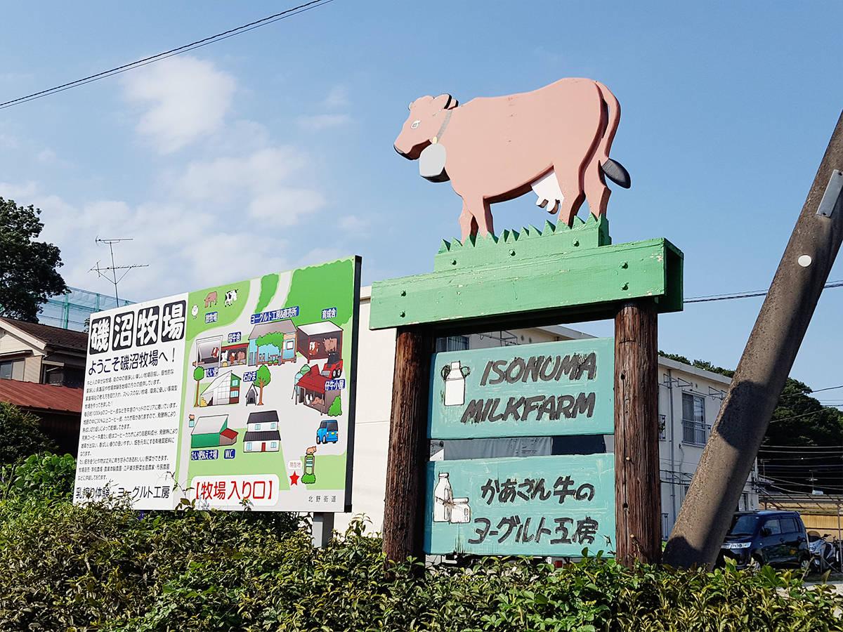 【東京・八王子】都内で牧場体験が味わえる「磯沼ミルクファーム」