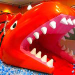 【宮城】巨大ワニすべり台が人気!「あそび王国ぴぃかぁぶぅ佐沼店」