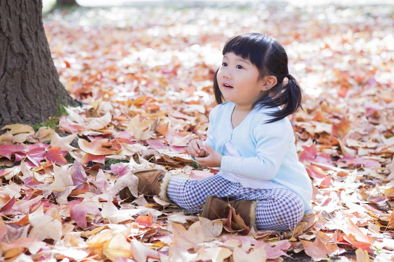 幼児と秋を感じるゲームで遊ぼう!室内戸外で自然に触れあえるゲーム
