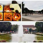 【東京・上野】パンダの可愛いパンと自然を求めて上野恩賜公園を散歩