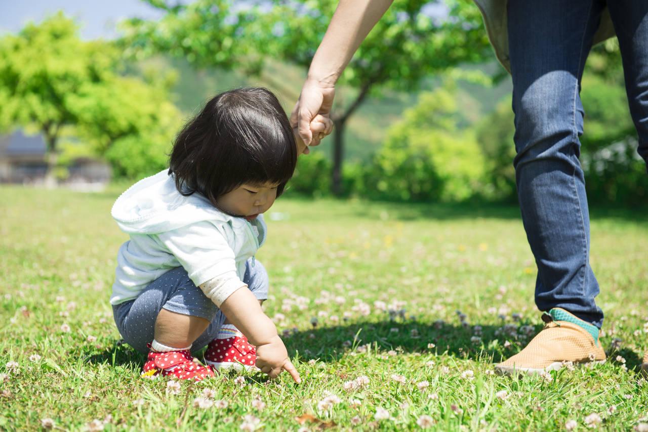 お散歩に幼児用リードは必要?子どもを守る使い方のポイントとは