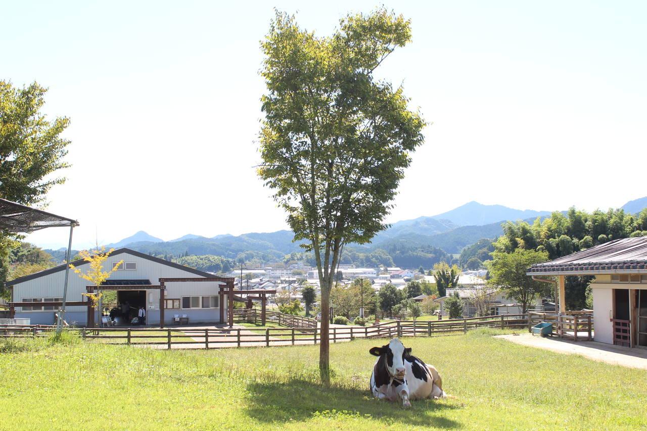 【奈良】動物も遊びも盛りだくさん!「うだ・アニマルパーク」
