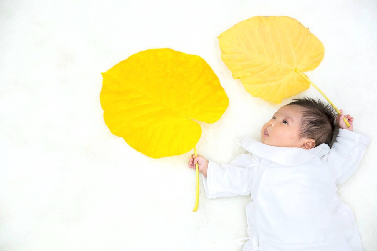 赤ちゃんの名前に秋を連想する漢字を使おう!自然や季語に関する漢字
