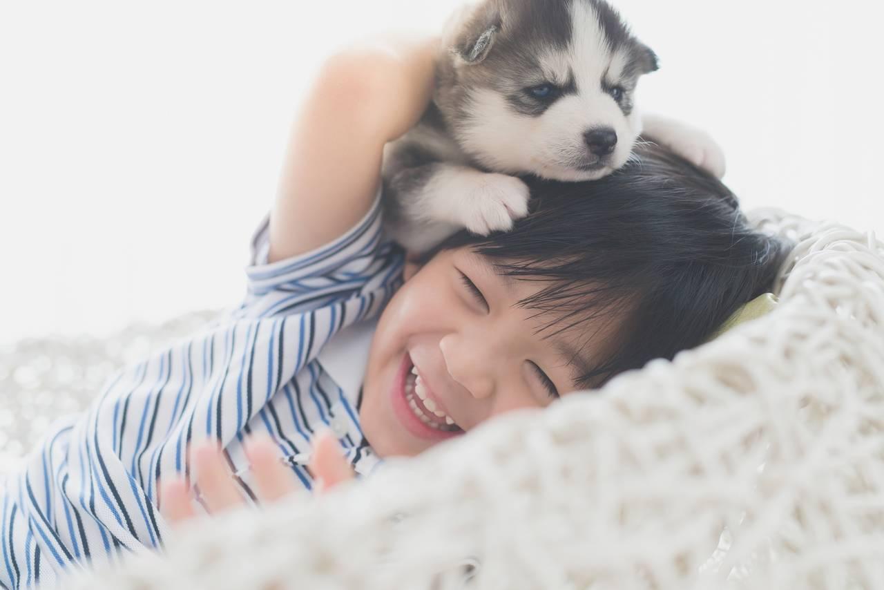 共働きでも犬を飼いたい!子どもと相性のよい犬種と飼うときのコツ