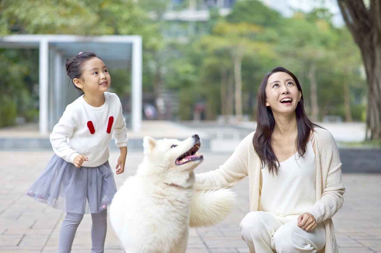 子どもと一緒に犬の散歩に行こう!メリットと注意点を紹介