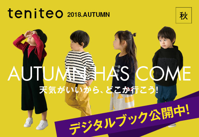 デジタルブックでも読める!遊び場が満載の「teniteo秋号」