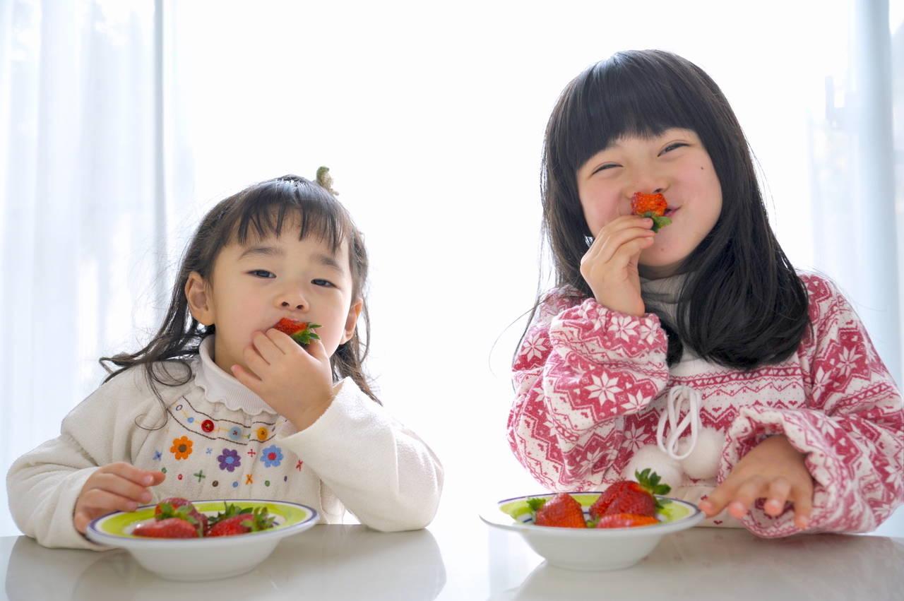 姉妹の子育てで教育をしよう!仲のよい姉妹に育てるコツを紹介