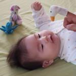 赤ちゃんは動くおもちゃが大好き!選び方や玩具3選、手作りおもちゃ