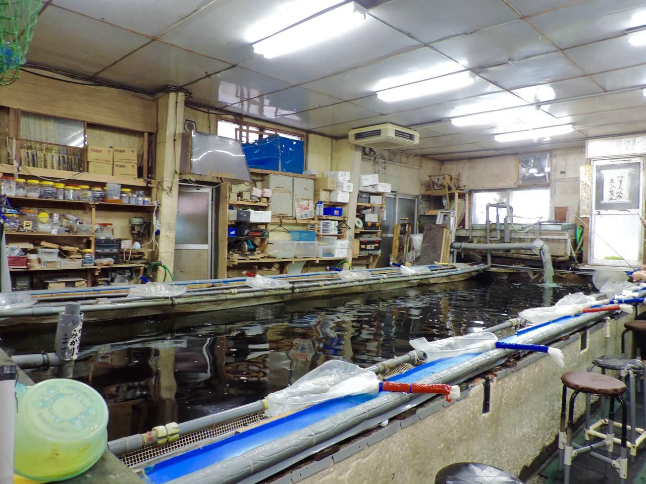 【東京】昔ながらの雰囲気に包まれ釣り体験「つりぼり金ちゃん」