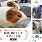 【東京】週末に子どもと行きたい動物と触れ合えるスポット8選!