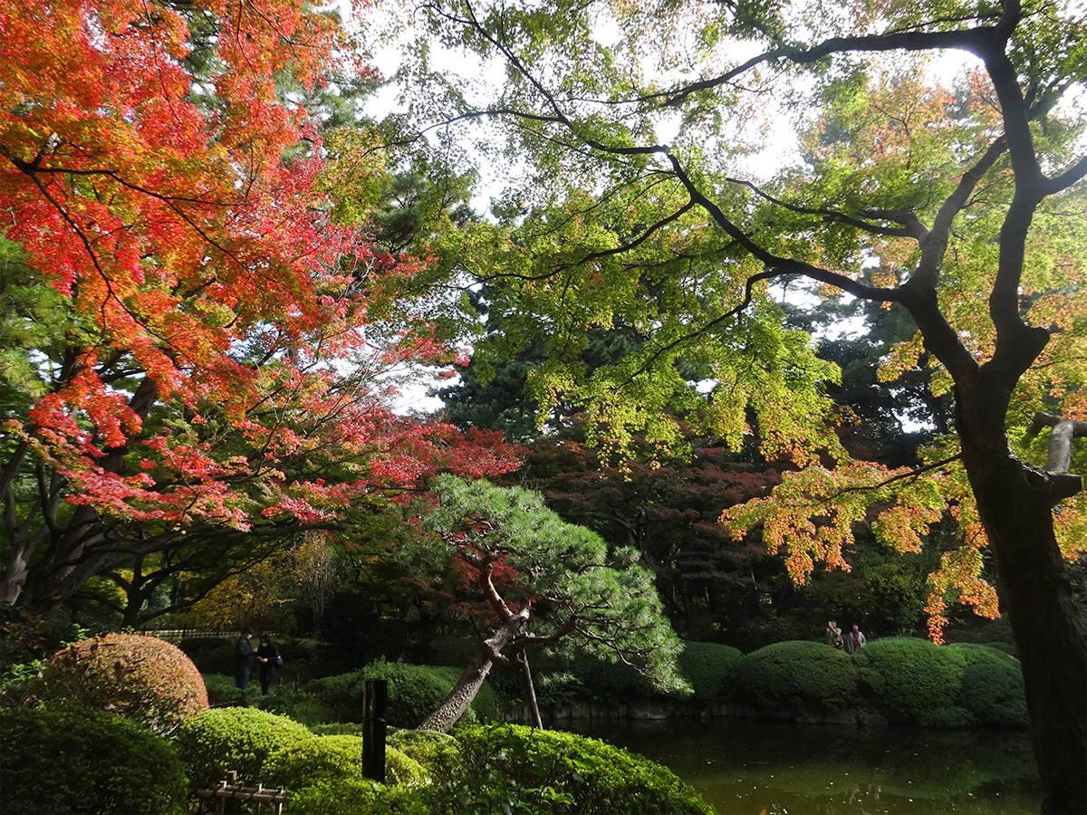 【目黒】日本庭園と西洋庭園を子どもと満喫!「東京都庭園美術館」