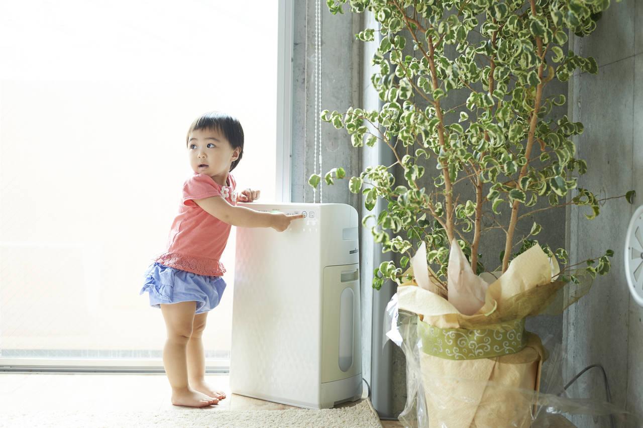 冬の乾燥から肌を守ろう!加湿器の選び方や簡単にできる乾燥対策方法