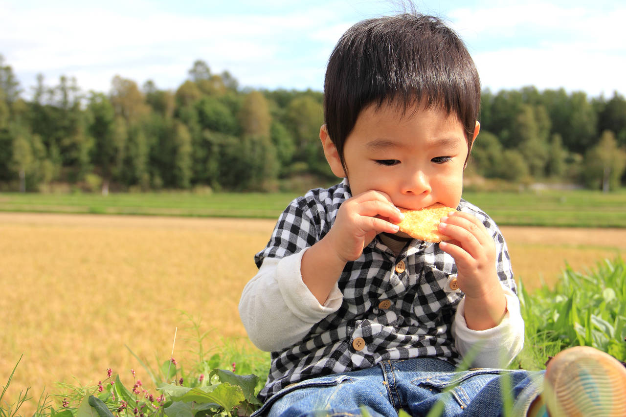 お米を使ってせんべいを作ろう!子どもによい理由とリメイクおやつ