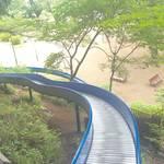 【東京・国分寺】迫力満点のロングローラーすべり台に乗ろう「黒鐘公園」
