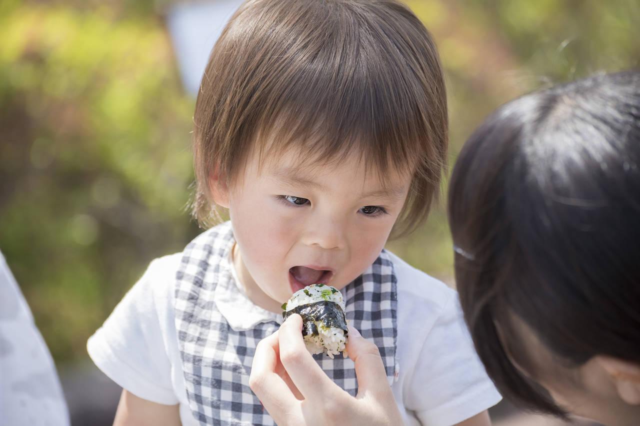 幼児に安心な無添加ふりかけ!美味しいふりかけや手作りレシピの紹介