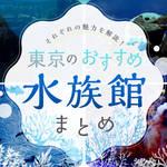 【東京】次はどこ行く?子どもと行きたいおすすめ水族館まとめ