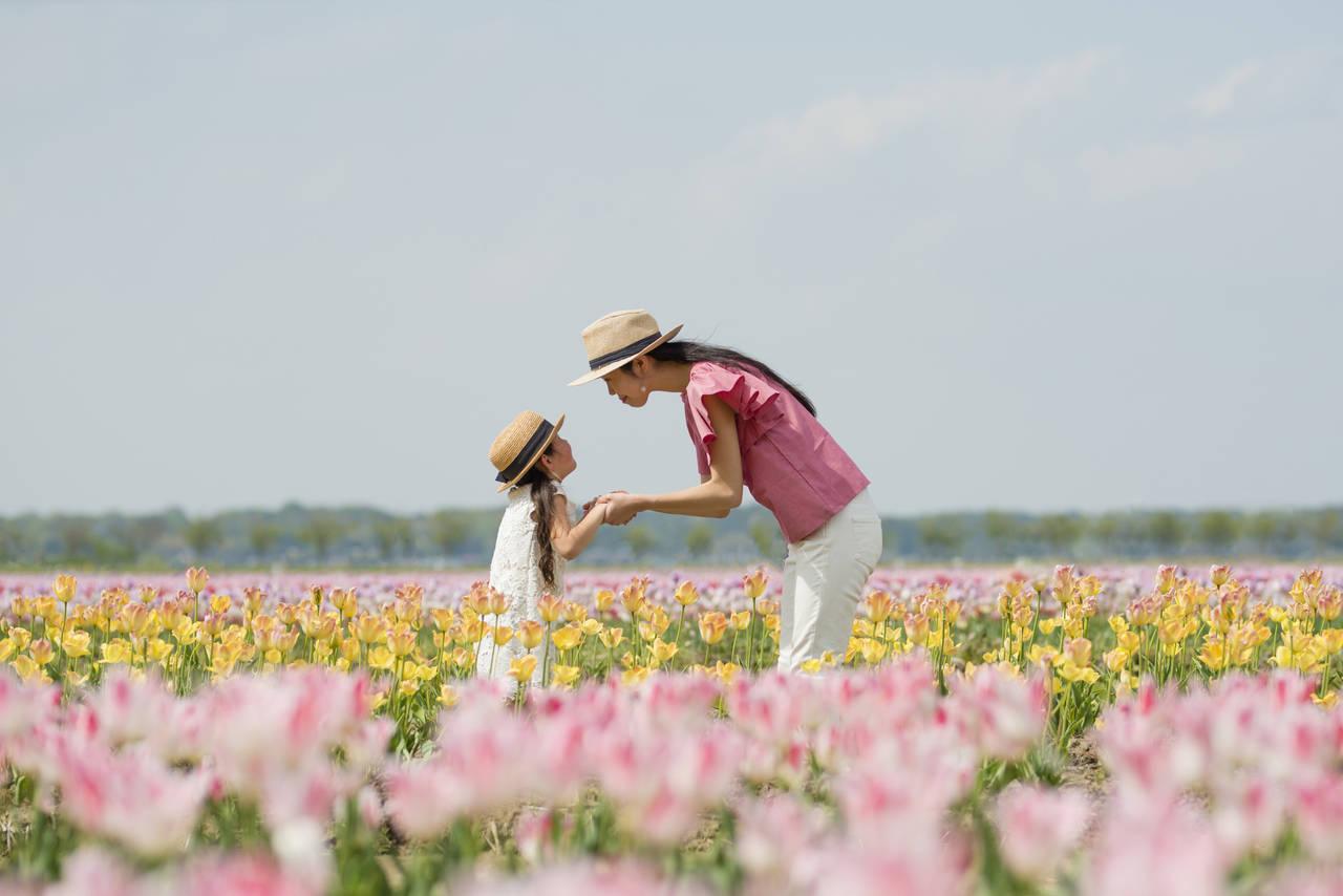 子連れで長崎旅行をしよう!人気観光スポットと宿泊施設を下調べ