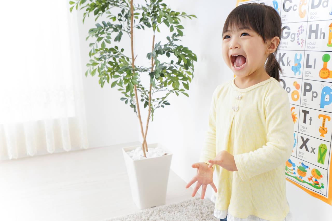幼児向けホビングリッシュを知っていますか?英語で学ぶ習いごととは