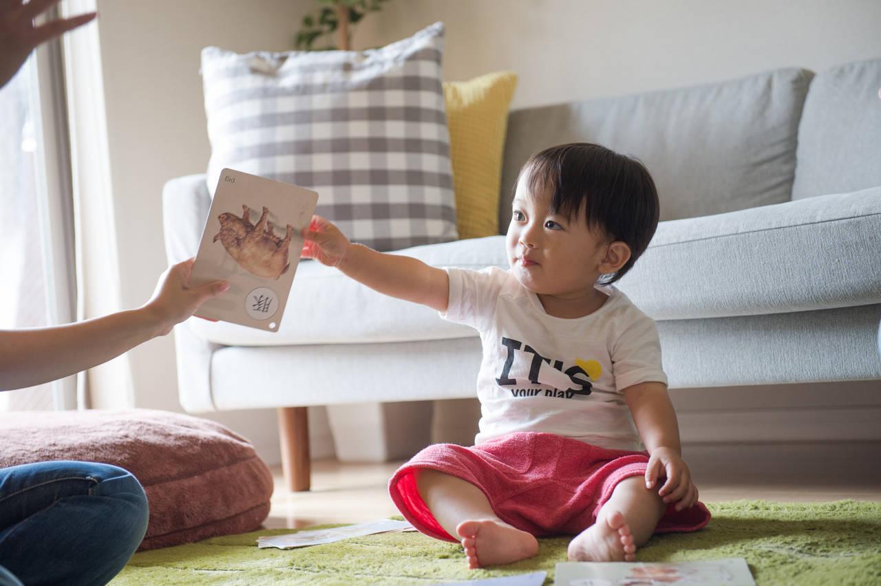 さまざまなかるたの遊び方を知ろう!はじめてでも親子で楽しむ方法