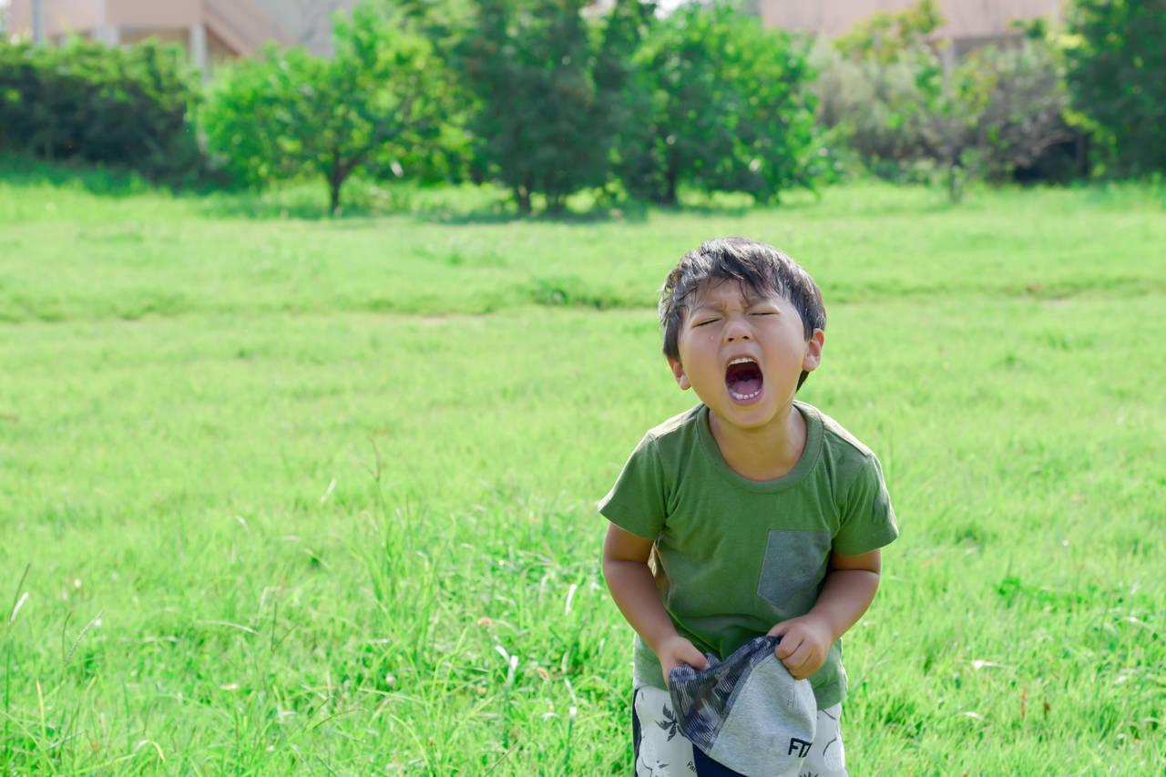 6歳の子どものわがままに大苦戦!親が対応するときに気をつけること