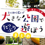 【東京・千葉】とにかく広い!大きな公園でたっぷり遊ぼう まとめ