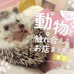 【東京】未就学児OK!動物と触れ合えるお店 まとめ
