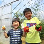 【東京】「農」を体で感じよう!「足立区都市農業公園」