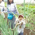 【東京・小金井】「会員制農場ポモナ」で畑のある暮らしを