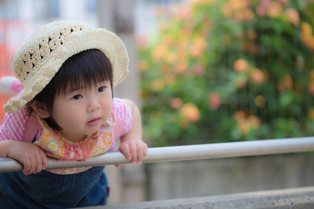 鳥取で子どもと遊ぶならここ!おすすめスポットと気をつけるポイント
