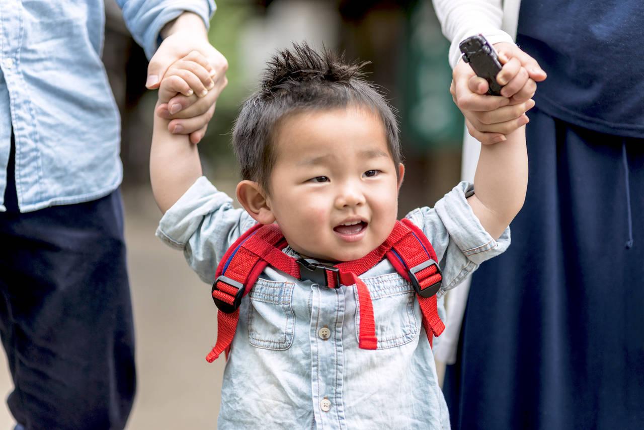 静岡県に子どもと遊びに行こう!自然がいっぱい静岡の魅力をお届け