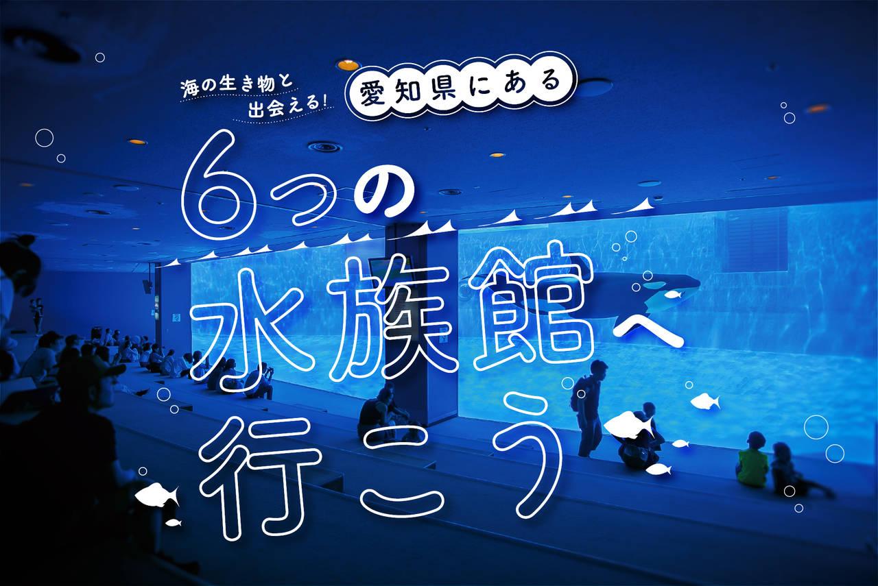 【愛知】海の生き物と出会える!愛知県にある六つの水族館へ行こう