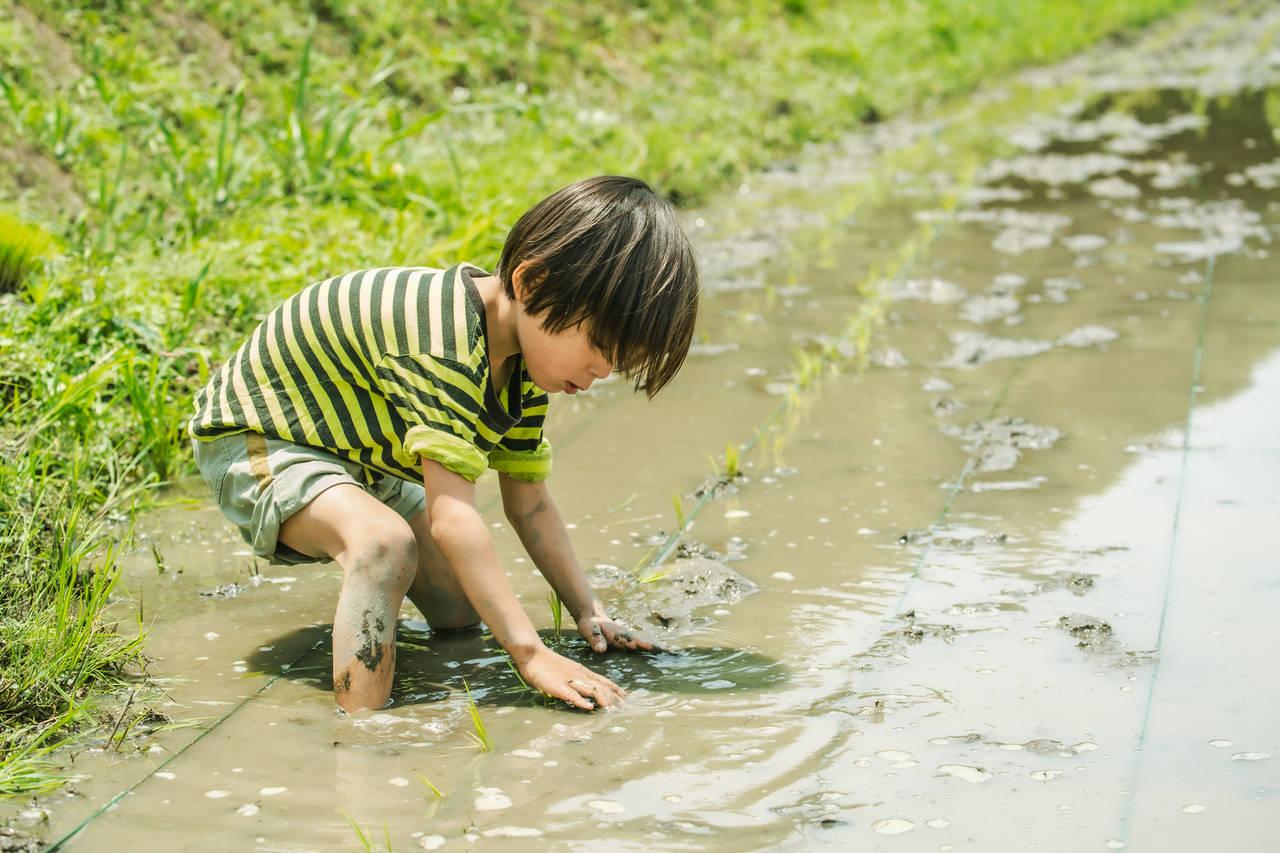 子ども服の土汚れを落とすのが大変!土汚れをきれいに落とす方法とは