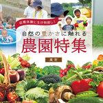 【東京】収穫体験に生き物探し!自然の豊かさに触れる農園特集
