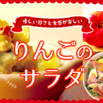 【管理栄養士監修】優しい甘さと食感が楽しいりんごのサラダ
