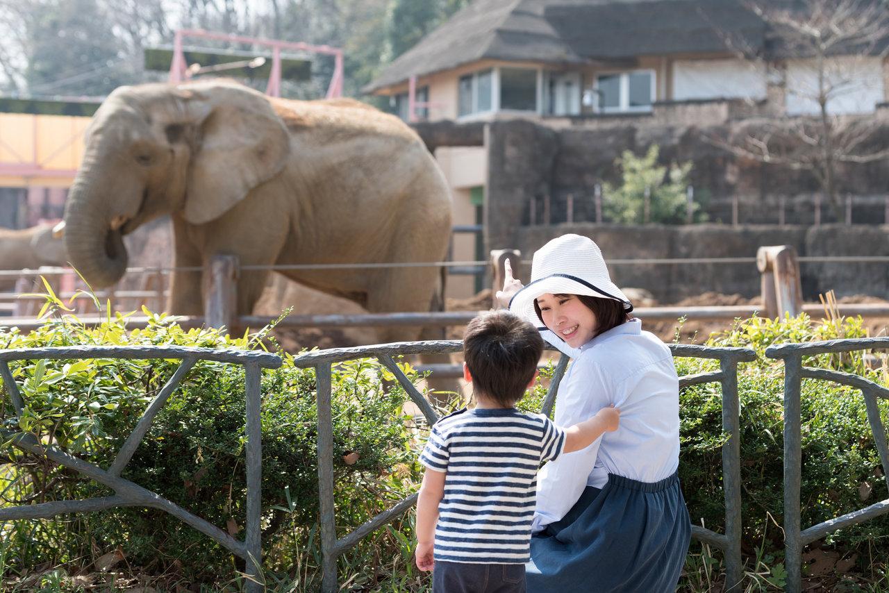 関東のおすすめの動物園は?赤ちゃんや子どもと動物園を楽しもう