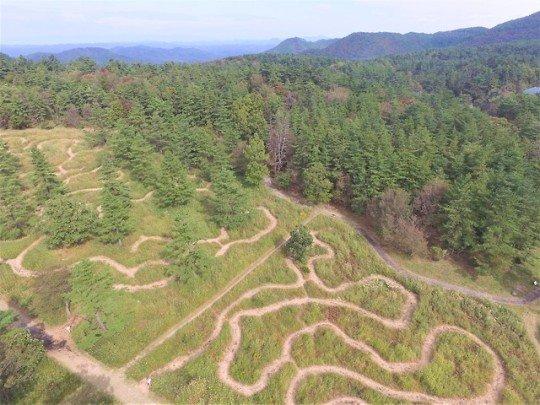 大自然を満喫!島根の北の原のススキ草原に出現する期間限定の迷路