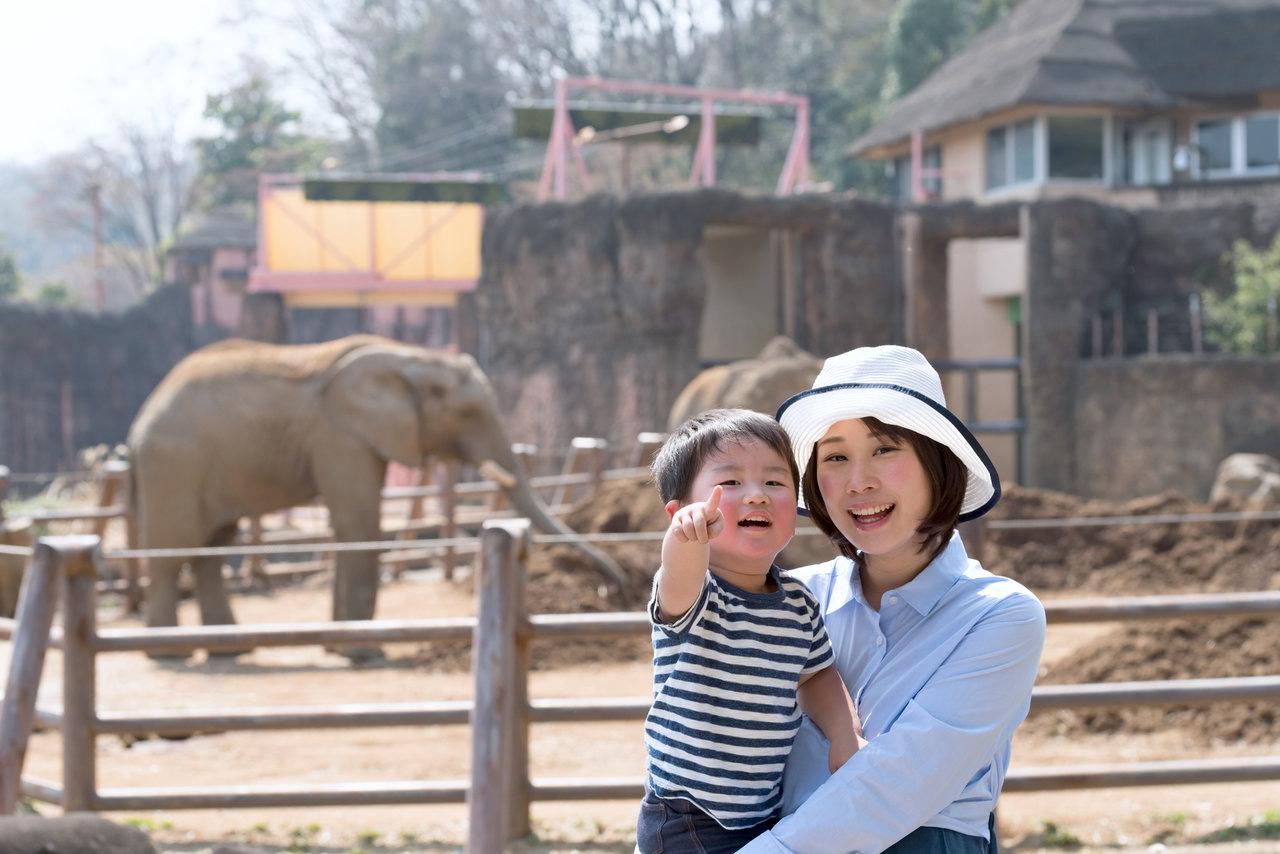 東北の動物園へ遊びに行こう!親子で満足できるスポットを紹介
