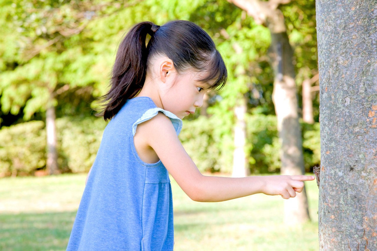 6歳児は好奇心のかたまり!子どもの知りたい気持ちを伸ばす方法
