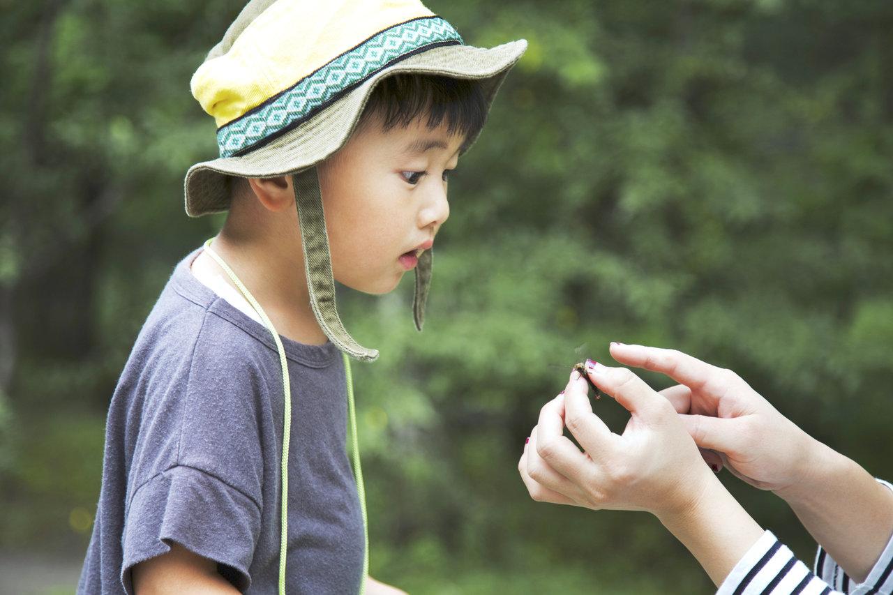好奇心が強いのは男の子の特徴?メリットや子育てのポイントを紹介