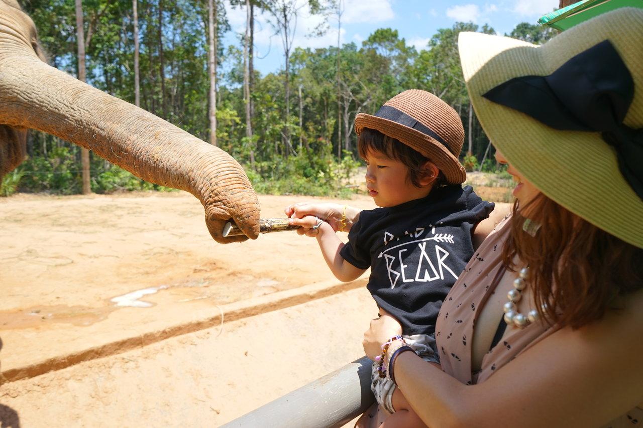 中国・四国地方の親子で楽しめる動物園!園ごとの特徴や魅力を紹介